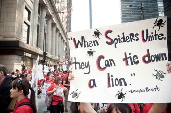spiders-unite_660